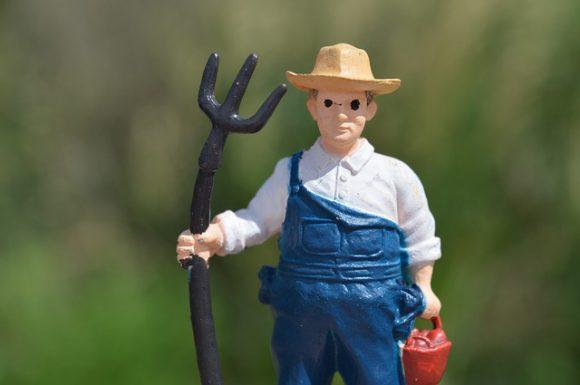 farmer-1497811_640